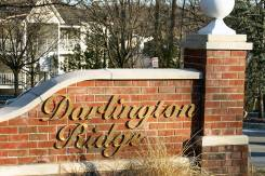 darlington_ridge